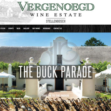 vergenoegd-wine-estate-stellenbosch-where-your-western-cape-winelands-journey-begins